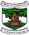 Coláiste Lorcáin Castledermot